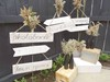 Wooden Hanging Signs on Arrow Stands, Stacking Crates and Matte Black Bottles with Feather Grass Bouquets Hollow Furniture